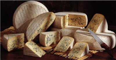 Blue cheese from Sassenage - Bleu de Sassenage